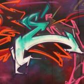 https://www.propaganza.be/wp-content/uploads/2015/09/Trevor-lettrage-typo-font-calligraphie-propaganza-urban-artist-graffiti-graff-street-art-spray-painting-belgique-1.jpg