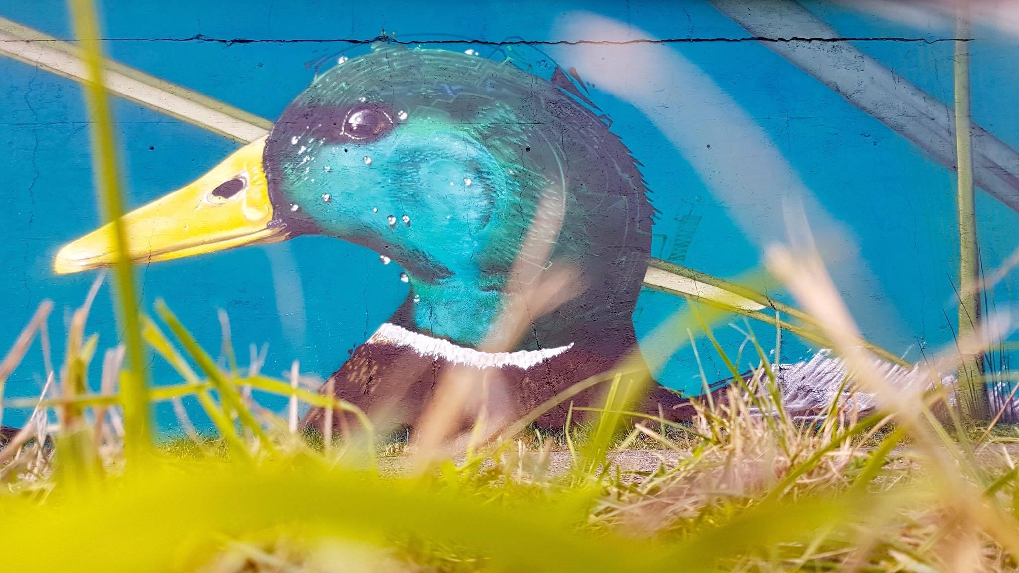 https://www.propaganza.be/wp-content/uploads/2019/04/Sorka-typo-calligraphy-propaganza-urban-artist-graffiti-graff-street-art-spray-painting-belgique-1.jpg